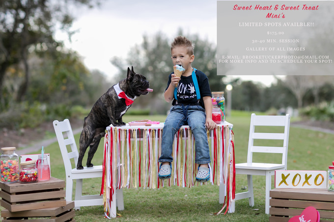 little boy and french bulldog sharing cotton candy for valentines day