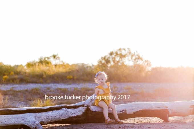 Beautiful outdoor family portraits, Virginia Child and Family photographer brooke tucker